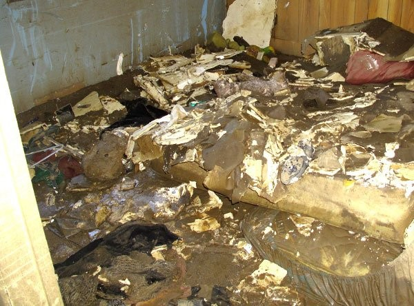 Water Damage Prevention: 3 Great Resources